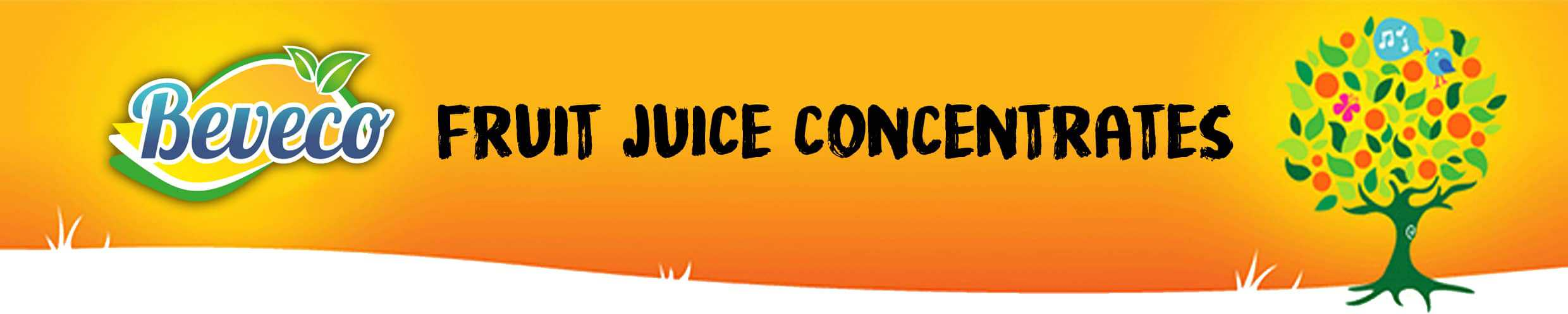 Fruit Juice Concentrates By Beveco