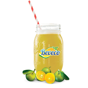 kasturi lime fruit juice concentrate drink